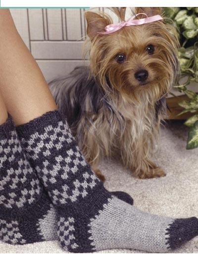 Checkered Socks photo