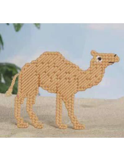 Animal Magnetism #42: Camellia Camel photo
