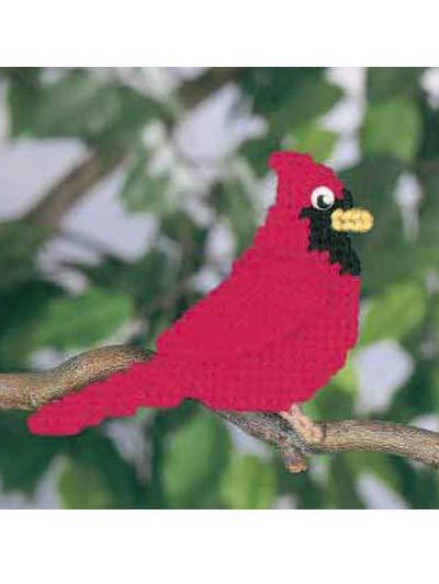 Animal Magnetism #43: Cory Cardinal photo