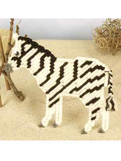 Animal Magnetism #44: Zelda Zebra photo