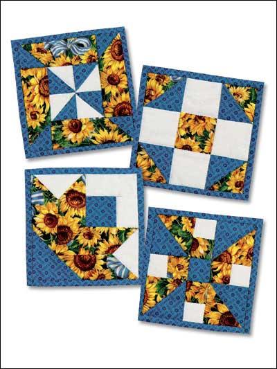 Sunflower Sunshine photo