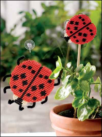 Ladybug Duo photo