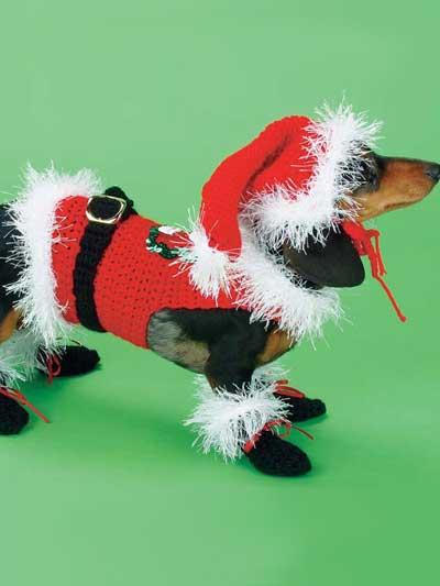 Santa Dog Costume photo