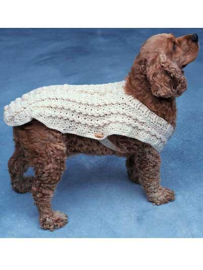 Doggie Duds - Aran photo