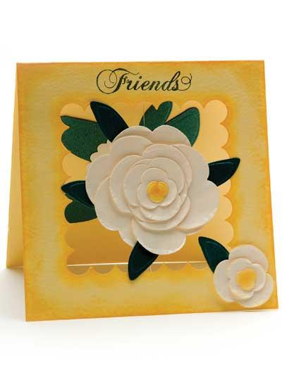Friends Card photo