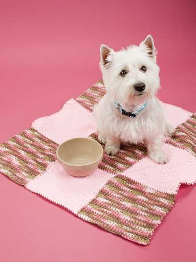 Pet Blankets photo