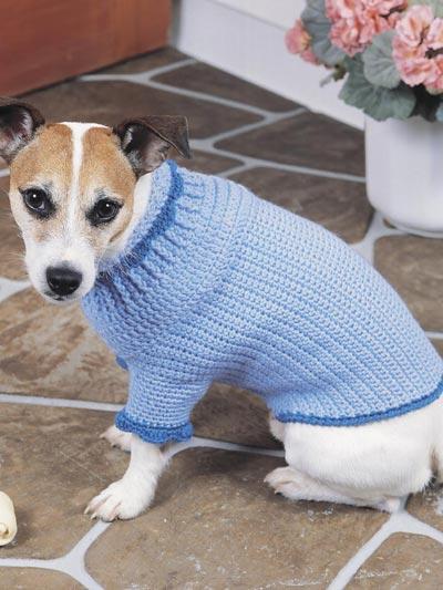 Canine Comfort Dog Sweater photo